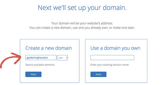 Pemeriksa domain Bluehost