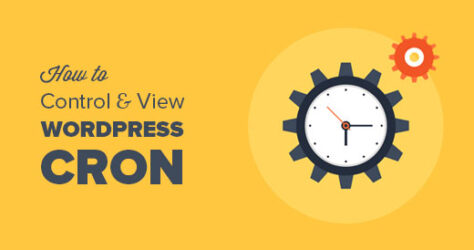 how-to-view-and-control-wordpress-cron-jobs[1]